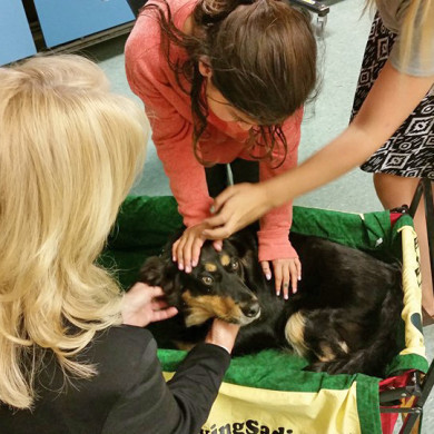GAB visits Marquette Elementary School